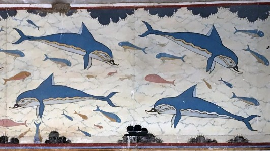 dolphins.1920x0